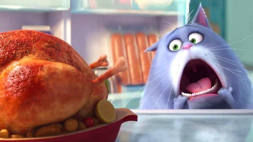 The Secret Life Of Pets - Teaser Trailer